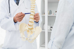 Close-up mid section of an osteopath explaining the spine to patient in medical office