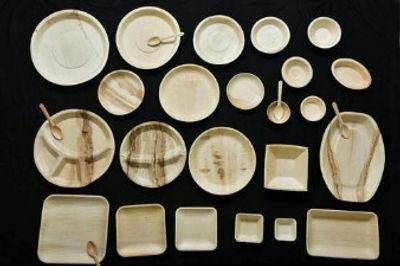 biodegradable-areca-leaf-cutlery-range-500x500_edited.jpg