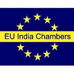 EU INDIA.jfif