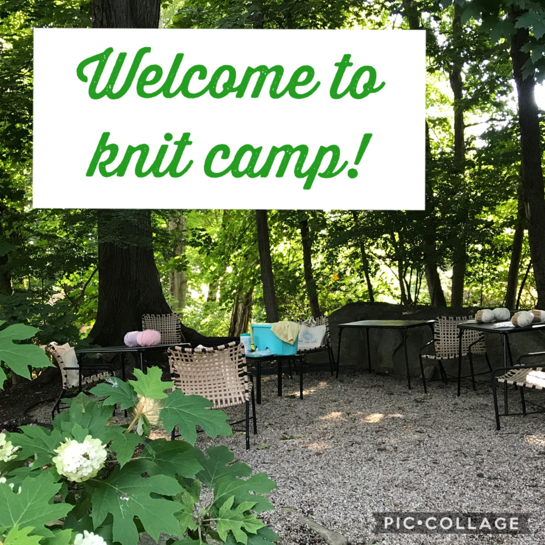 Adult Knitting Camp (7/5)