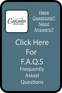 FAQ Sign 2.png