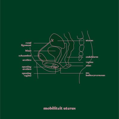 mobiliteit-uterus-groen.jpg