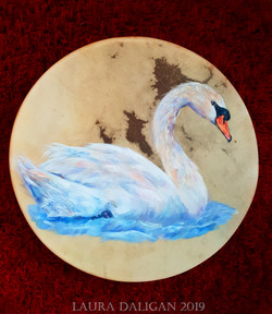 Swantje's Swan Drum