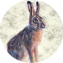Hare Drum for Belashka
