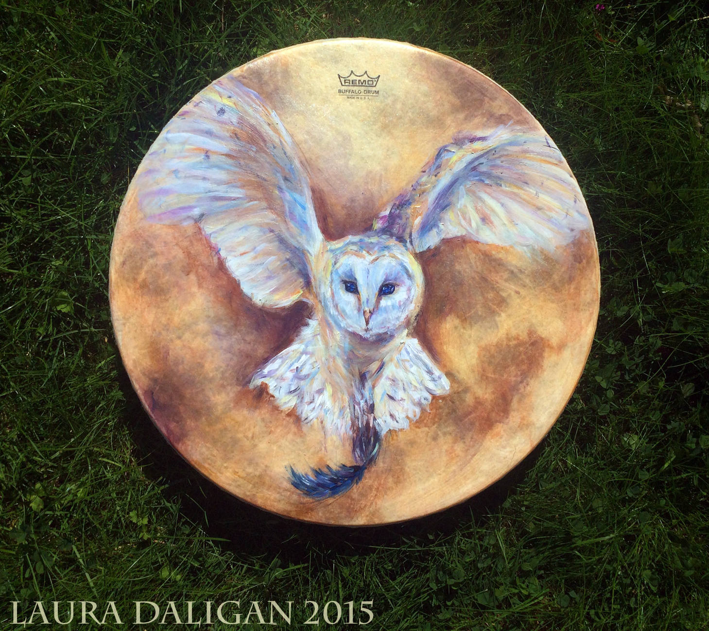 Sue's Barn Owl Drum