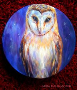 Little Barn Owl Drum