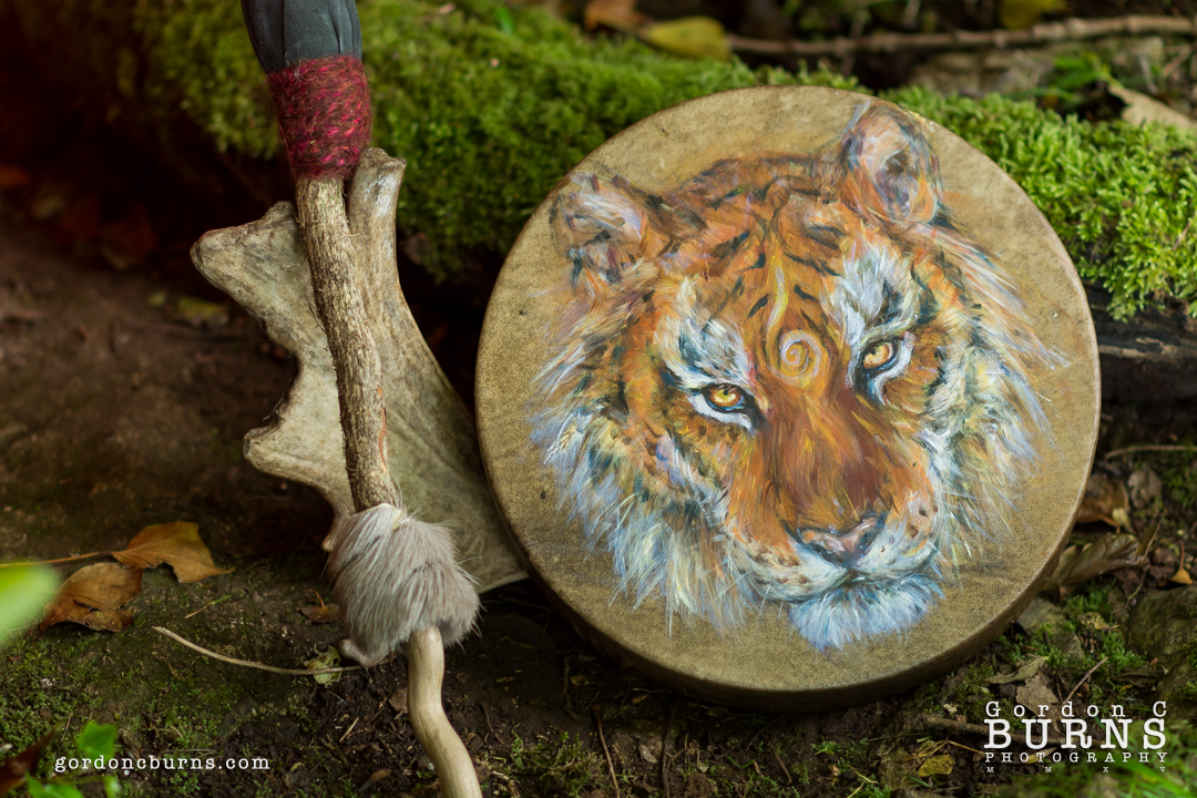 Tiger Shamanic Drum Commission