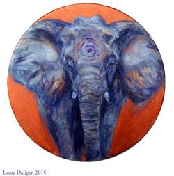 Peter's Elephant Drum