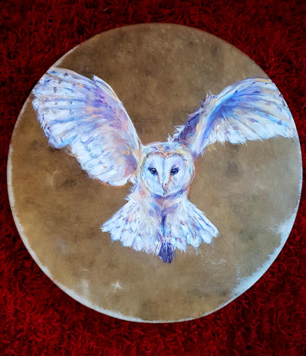 Frankie's Barn Owl Drum