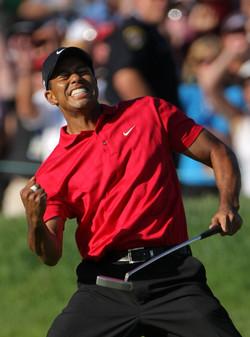 tiger-woods-golf-celebrity1