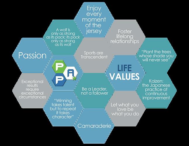 Life Values Hex (1).png