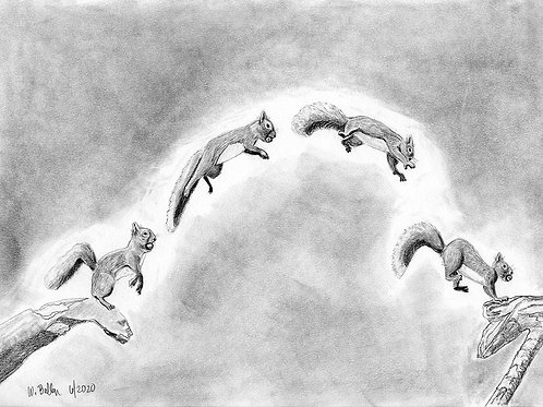 The Leap: Prints
