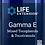 Thumbnail: Gamma E Mixed Tocopherols & Tocotrienols