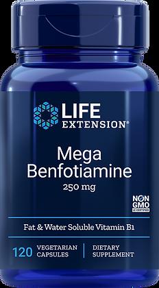 Mega Benfotiamine, 250 mg, 120 veg caps