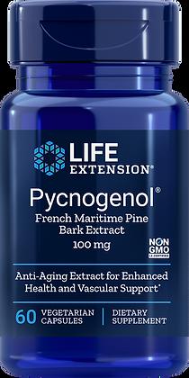 Pycnogenol, 100 mg, 60 veg caps