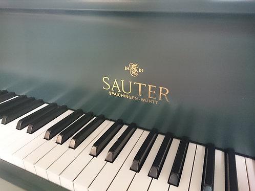 Sauter Delta 185
