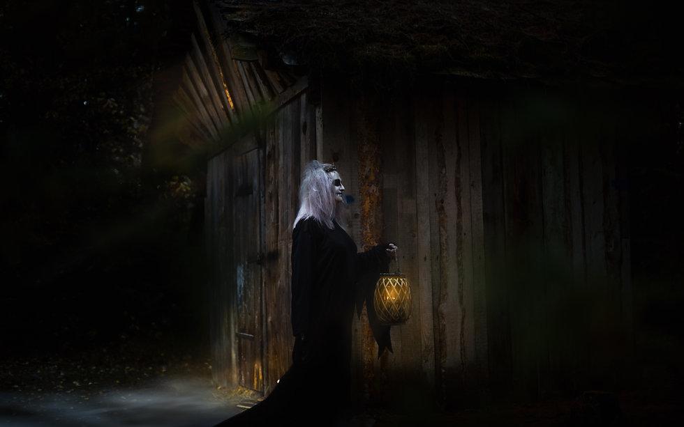 Elven princess - Jana-5838.jpg
