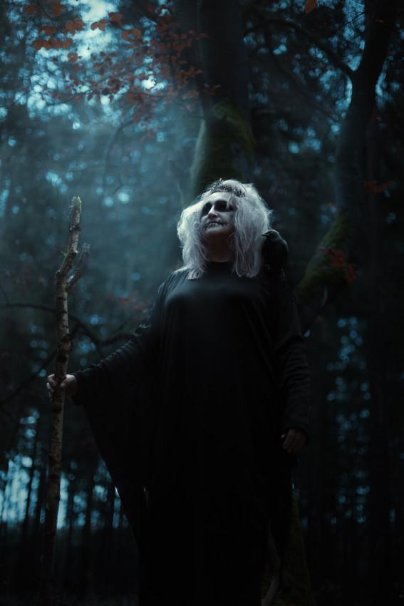 Lesní paní - Zapovězený les