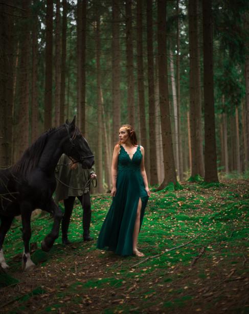 Elven princess-4412_1.jpg