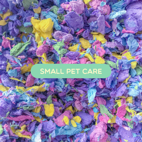 Small Pet Care