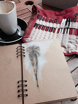 palm tree pencil sketch