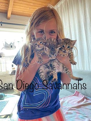 P & Kitties.jpg