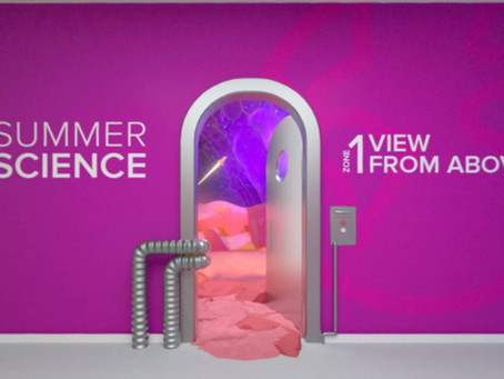 Summer Science with the Royal Society