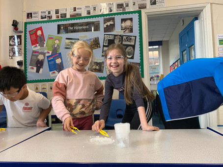 Budding Scientists with Labrascals