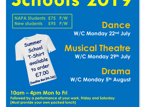 NAPA Summer School Advert