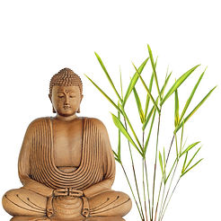 Stress Reduction Wellness Treatments - Fort Mill, SC   Baxter Village Health Center