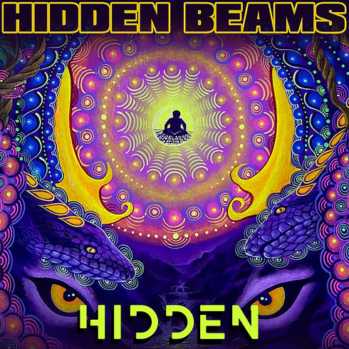 Hidden single for digital release.jpg