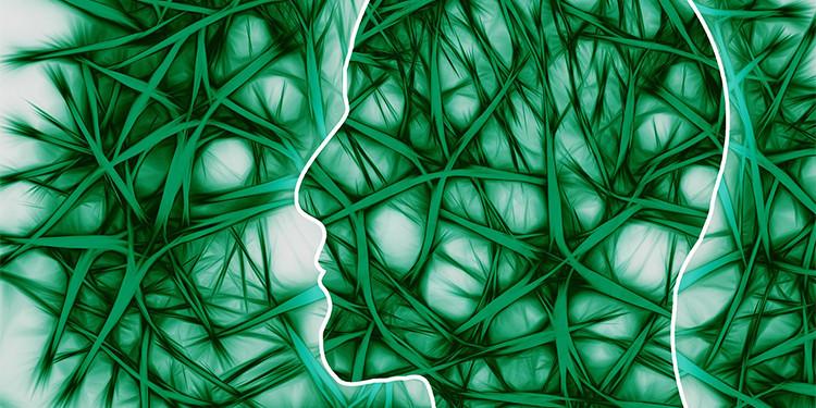 neuroscienze.jpg