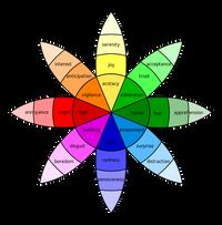 Le sette emozioni fondamentali che guidano il comportamento
