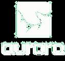 宇辉logo白.png