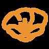 orangepoppy.png