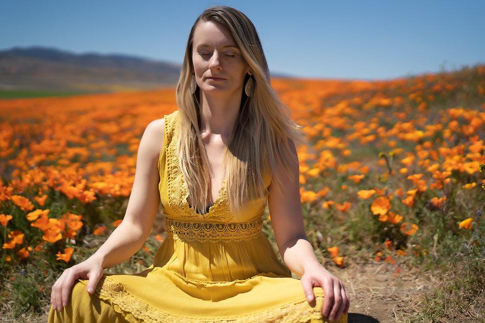 kdamstetter_meditation.jpg