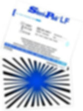 BD-108_web-225x300.jpg