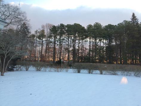 Winter-Yard-CasbaFilms.JPG