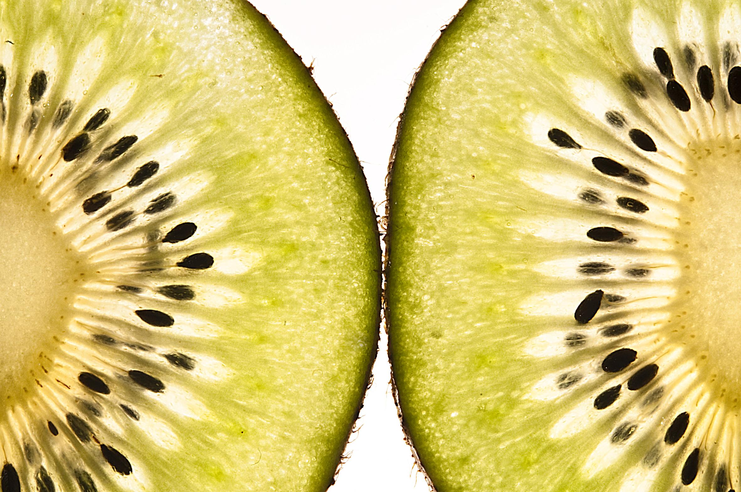 kiwi04