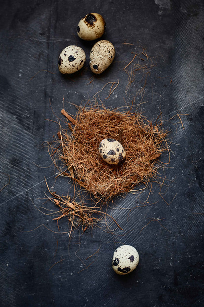 Personal  Food styling   P Photography   Nest   Eggs   Indian food   still life