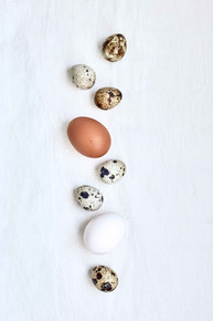 Personal   Food styling | Food Photography | series | eggs | still l