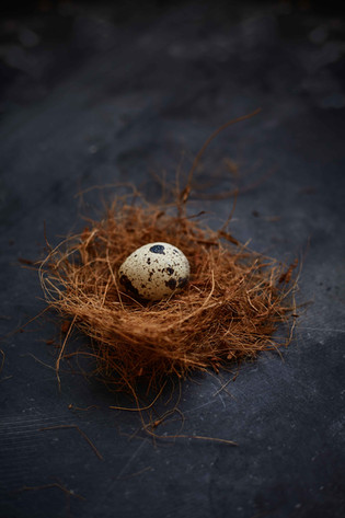 Personal  Food styling | Food Photography | Nest | Eggs | still life | series