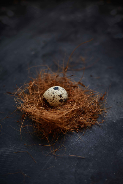 Personal  Food styling   Food Photography   Nest   Eggs   still life   series
