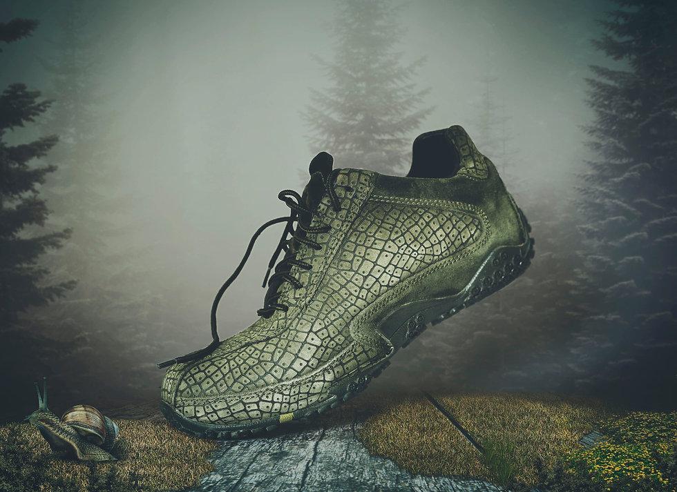 shoe for trekking