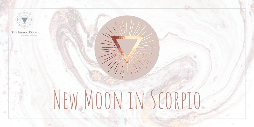 New Moon in Scorpio Meditation