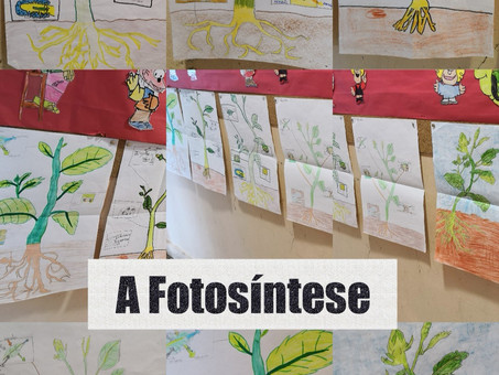 A fotosíntese