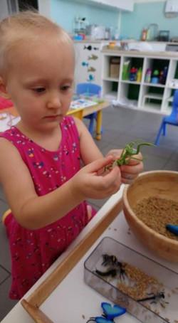 Práce s montessori pomůckou