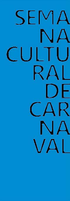 franja transparente carnaval 2019 vertic