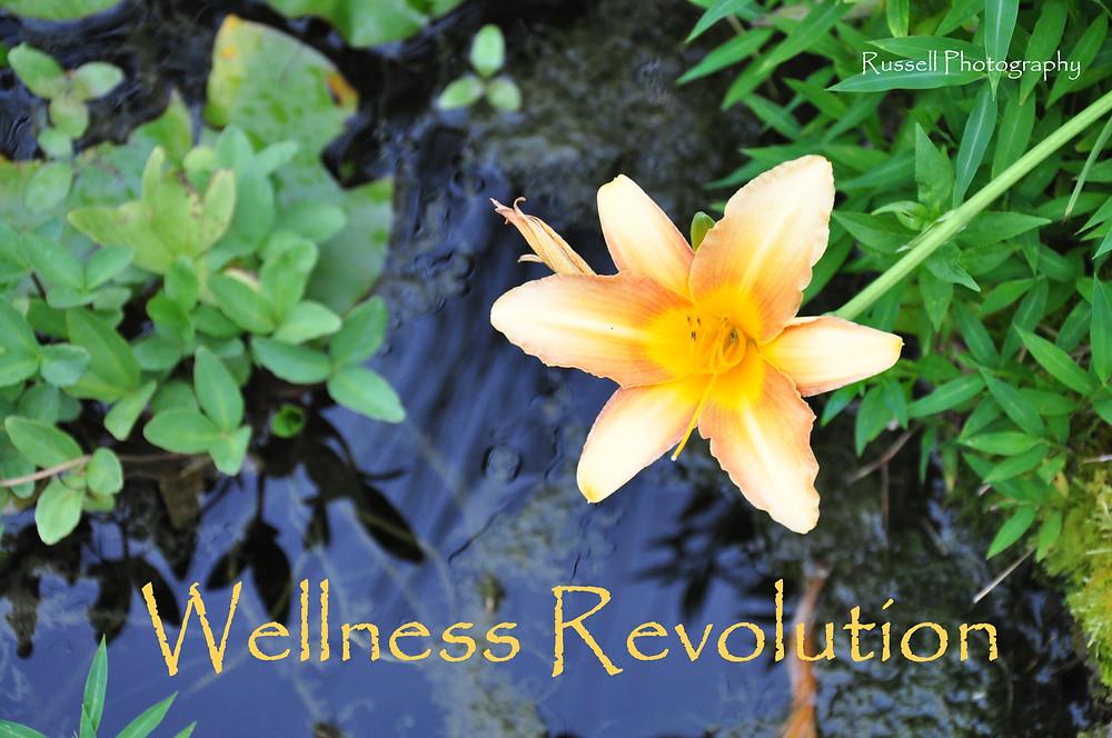 Wellness Revolution.jpg