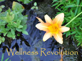 Do You Want a Wellness Revolution?